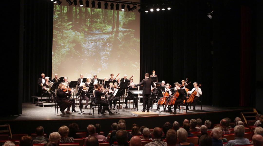 20170402-_5D34703-Voorjaarsconcert Hofnar 2017